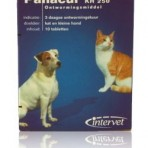 Panacur kleine hond en kat 250 mg per tablet